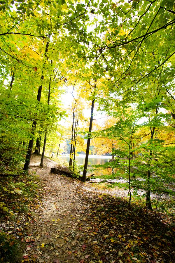 Fall on Ogle Lake, Brown County State Park, Indiana stock photo