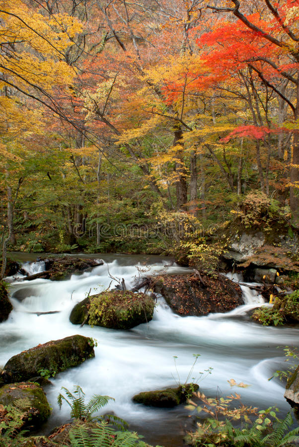 Fall Of Oirase, Japan Stock Photography