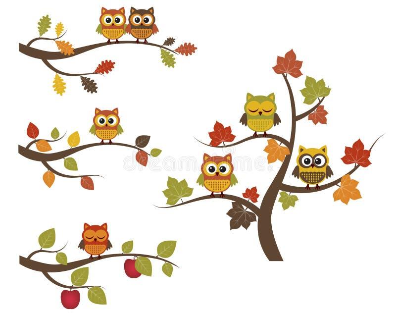 Fall owls royalty free illustration