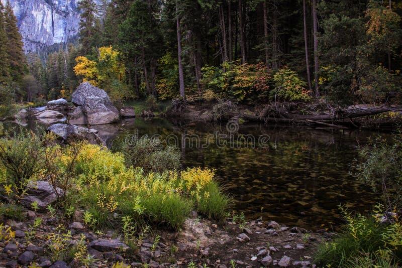 Fall på en tyst ström, den Yosemite nationalparken, Kalifornien, USA royaltyfria bilder