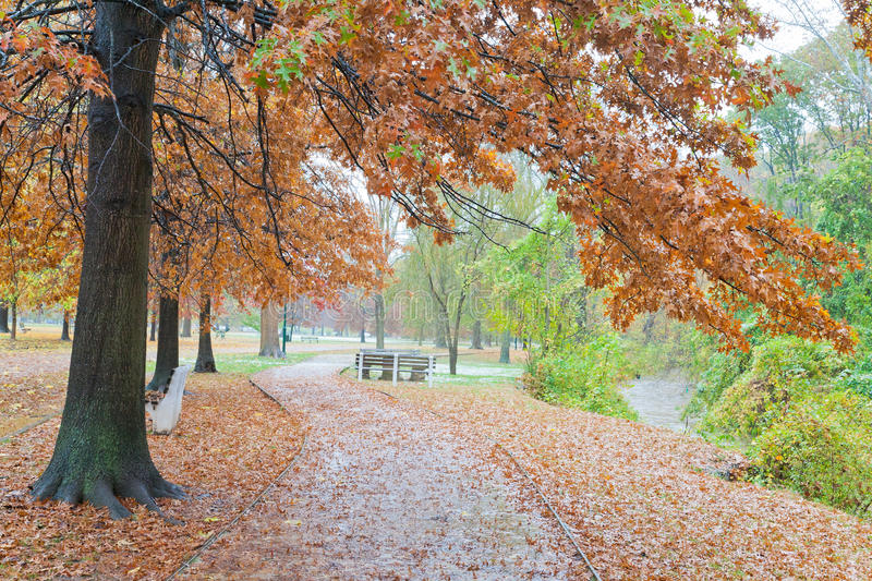 Fall Path by the Creek. Fall colors in Ritter Park, near Fourpole creek, one of the United States top ten city parks located in Huntington, West Virginia royalty free stock image