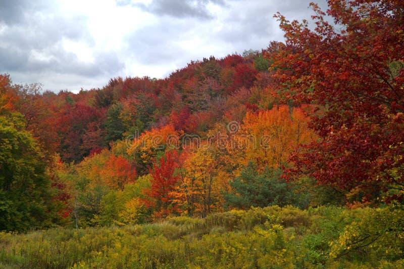 Fall in Pennsylvania stock photography