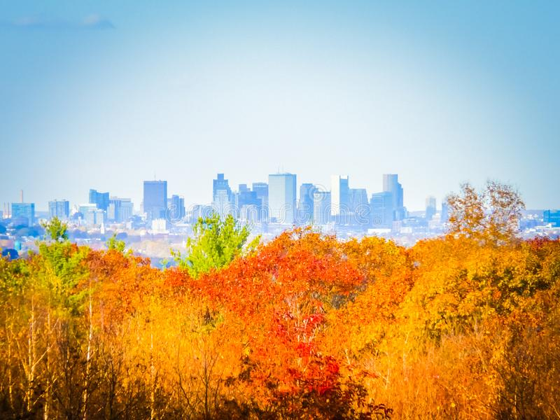 Fall photography of Boston`s skyline on a sunny day. Boston skyline panoramic image behind the orange, yellow, and red leaves during foliage in the Blue Hills royalty free stock image