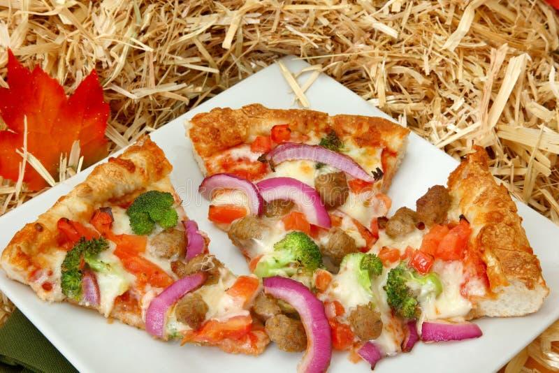 Fall-Pizza mit Herbst-Farben lizenzfreie stockbilder