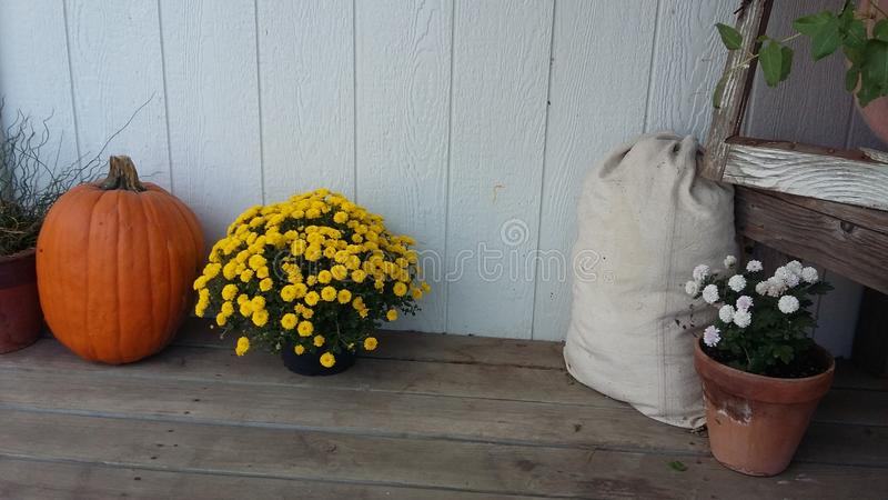 Fall on the Porch royalty free stock photo