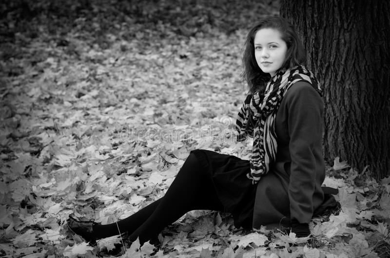 Download Fall portret BW stock image. Image of beauty, hair, foliage - 27519671
