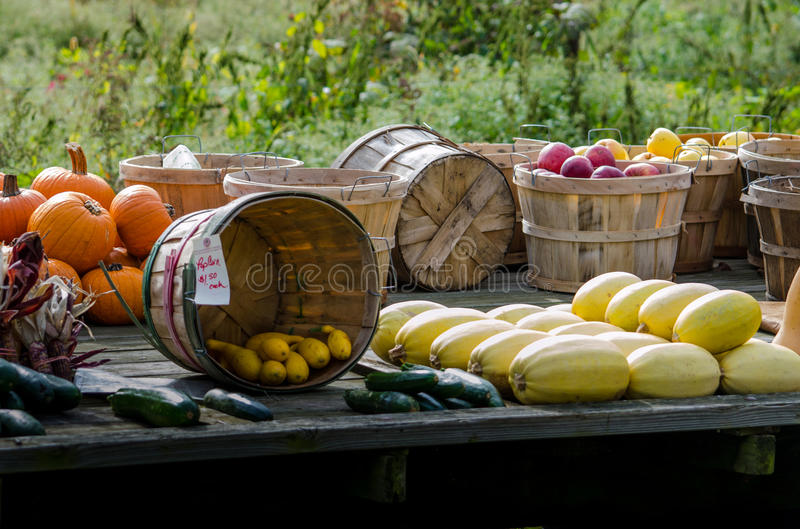 Fall produce for sale at an Indiana farm stand royalty free stock images