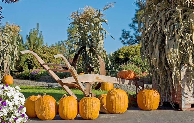 Fall Pumpkin and Plow Still Life