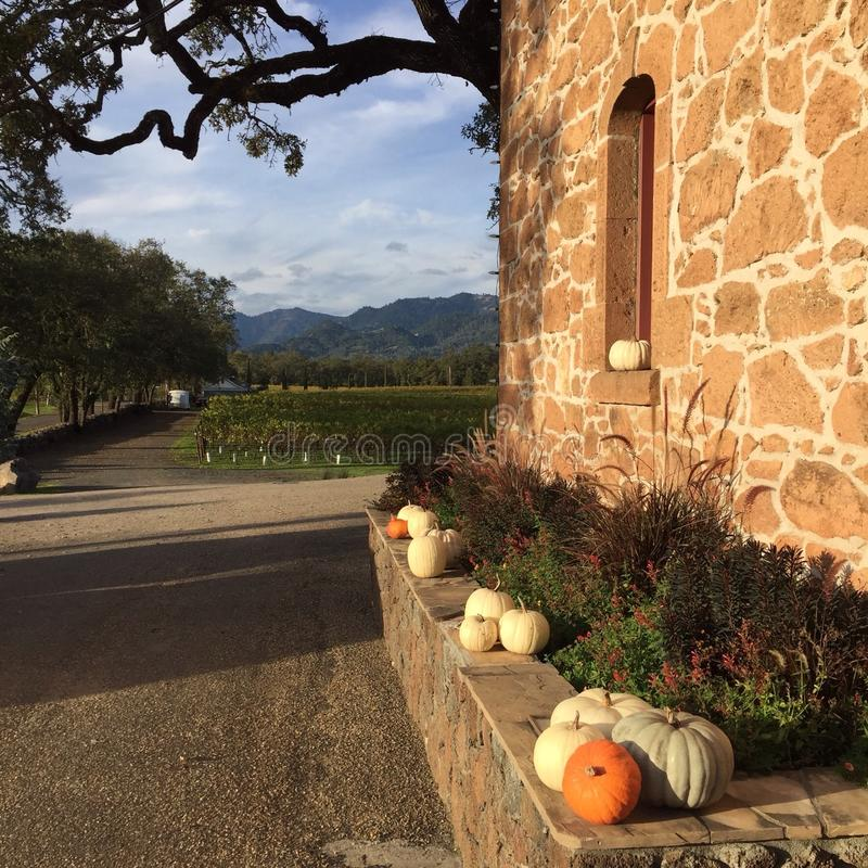 Fall. Pumpkins adorn stone winery building in Napa Valley California stock images