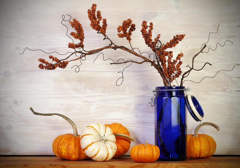 Fall Pumpkins Blue Vase. Decorative fall pumpkins on wood surface with cobalt blue glass container with dried berry branch, rustic white washed background royalty free stock photo