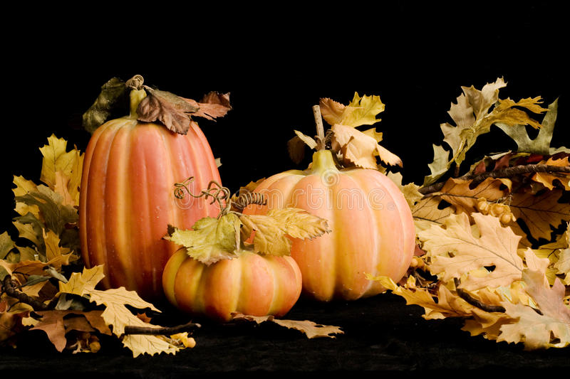 Fall Pumpkins & Leaves-horozontal royalty free stock photography