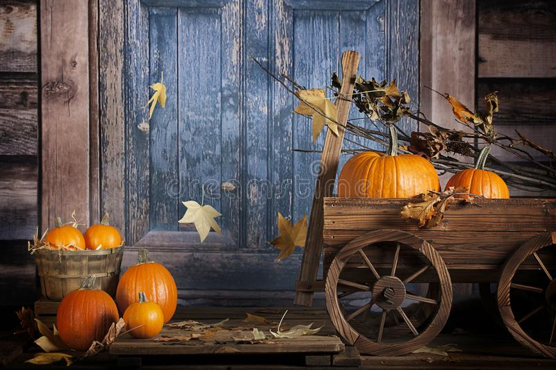 Fall Pumpkins Rustic Wagon. Pumpkins in rustic wood wagon and doorstep in front of old blue cabin door with falling autumn colored leaves royalty free stock photo