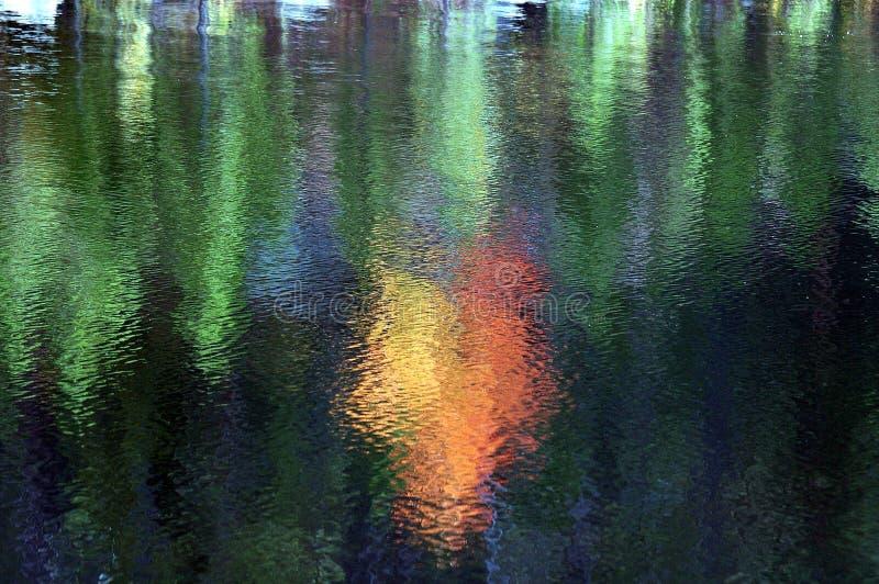 Fall reflections on a lake royalty free stock photo