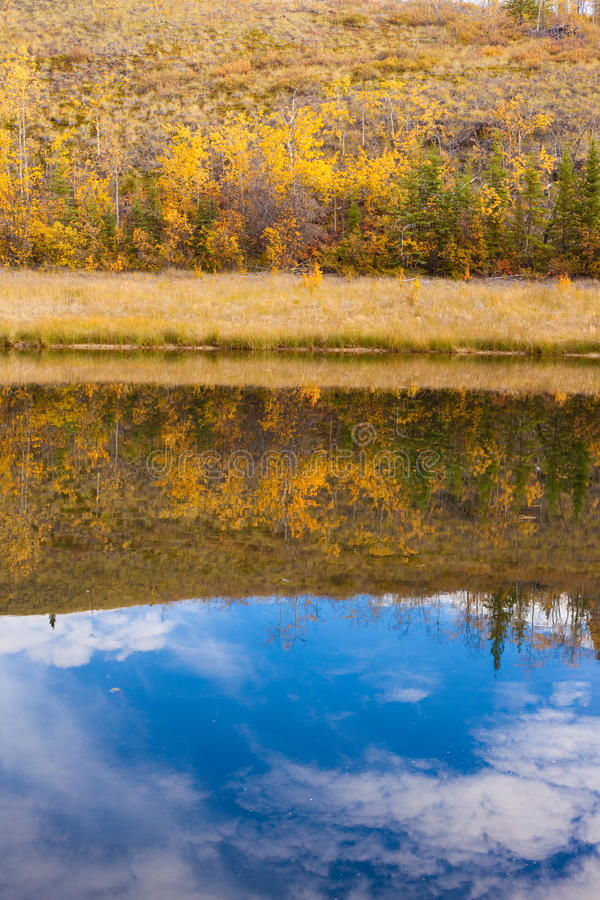 Download Fall Reflections On Water Surface Stock Photo - Image of colour, autumn: 17149470