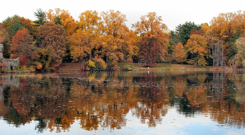 Fall-Reflexion 13 lizenzfreie stockfotos