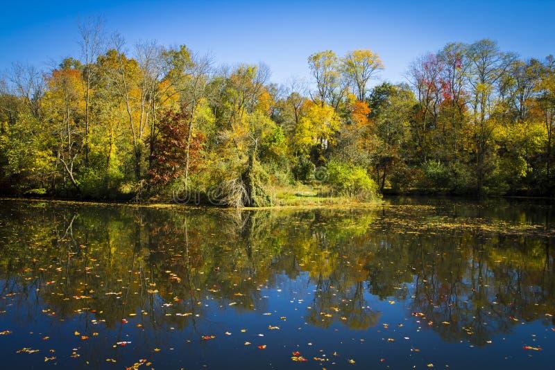 Fall-Reflexionen auf dem Delaware und dem Raritan Kanal stockfotografie