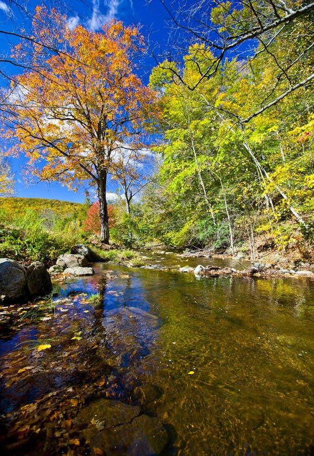 Fall River immagine stock