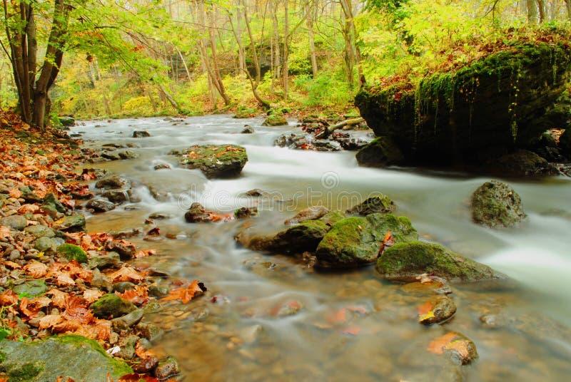 Fall River lechosa fotografía de archivo libre de regalías