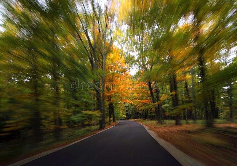 Fall road stock images