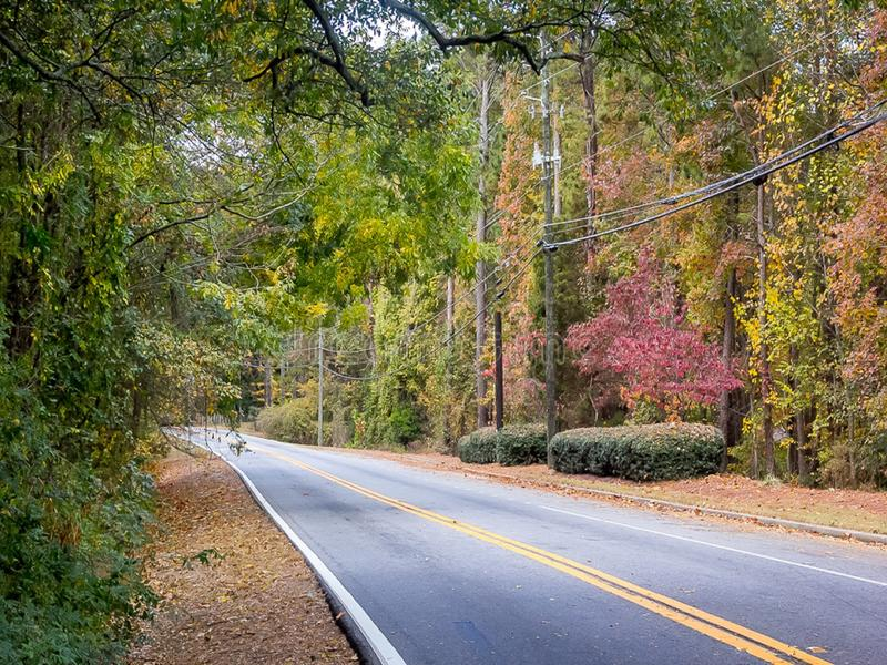 Fall Roadside royalty free stock photos