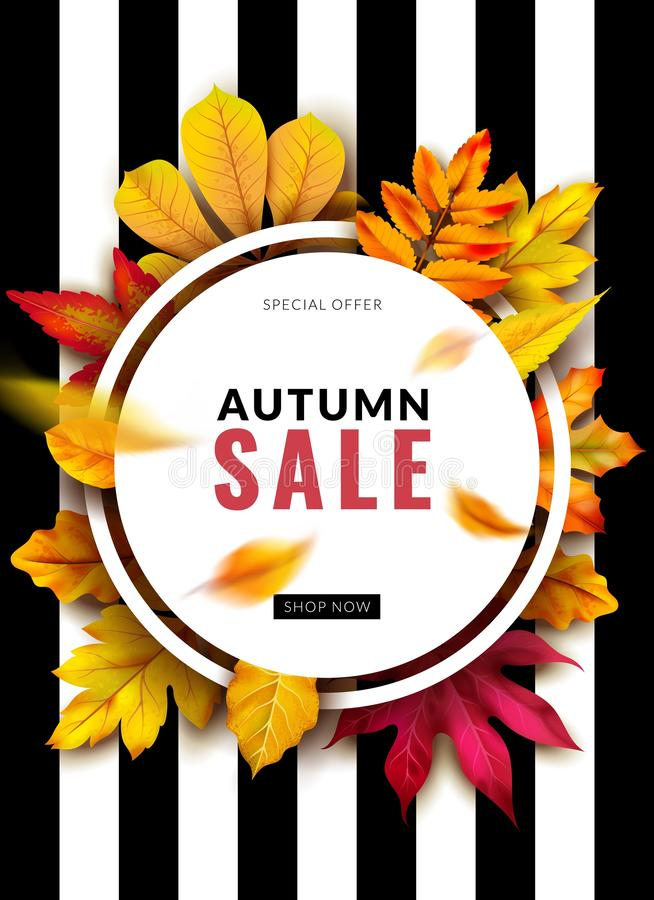 Fall sale. Seasonal autumn promotion design with red and yellow 3d leaves. September and october discount ad. Vector. Fall sale. Seasonal autumn promotion design royalty free illustration