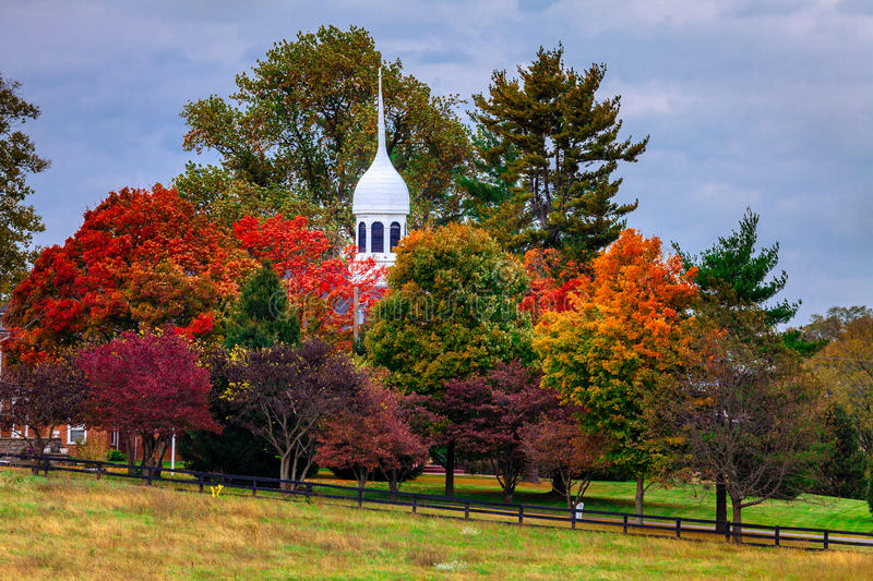Download Fall scene stock image. Image of scenic, vibrant, outdoor - 33957909