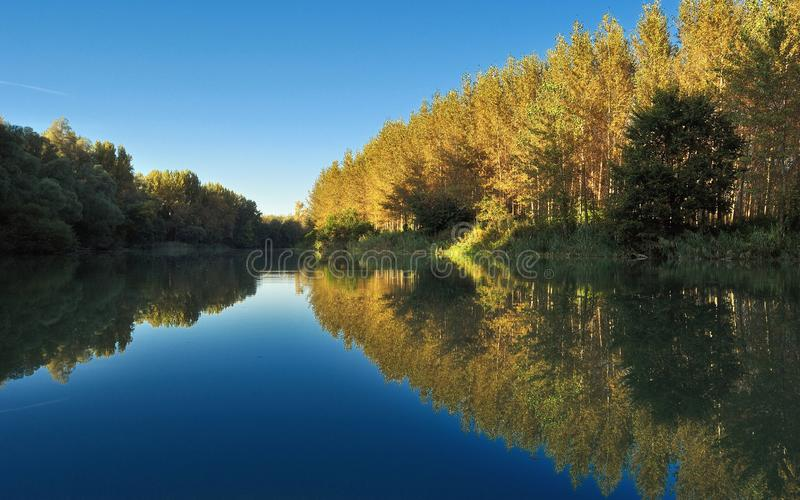 Fall Scene and Trees Autumn Reflection on Danube river royalty free stock photos