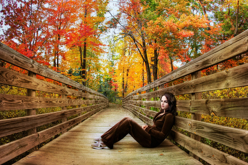 Download Fall season stock photo. Image of cold, happy, angle, lonely - 6848114