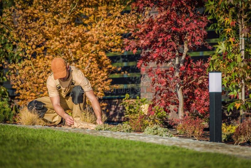 Fall Season Garden Works. Caucasian Men Planting New Flowers in the Backyard Garden stock image