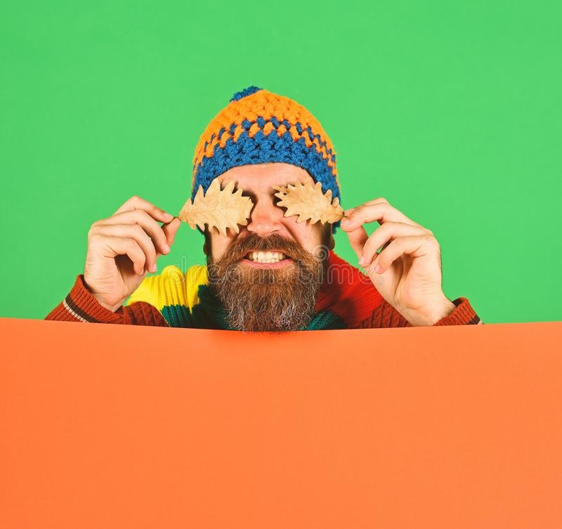 Fall season and hipster style. Autumn and fallen leaves concept. Guy with hidden face wears warm hat on green and orange background, copy space. Man with beard stock photography