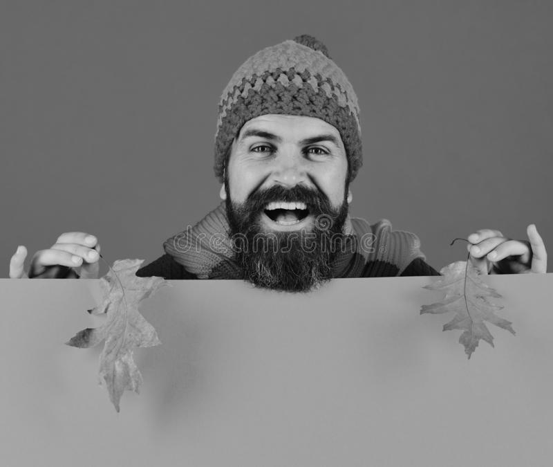Fall season and hipster style. Man with beard holds leaves. Fall season and hipster style. Man with beard holds dry oak tree leaves. Guy with cheerful face wears royalty free stock photo