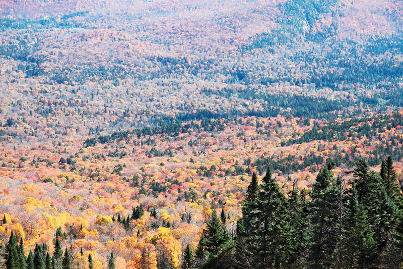 Fall Season In Mont-Tremblant, Quebec, Canada Royalty Free Stock Photos