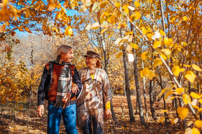 Fall season. Senior couple walking in autumn park. Middle-aged man and woman hugging and relaxing outdoors stock images