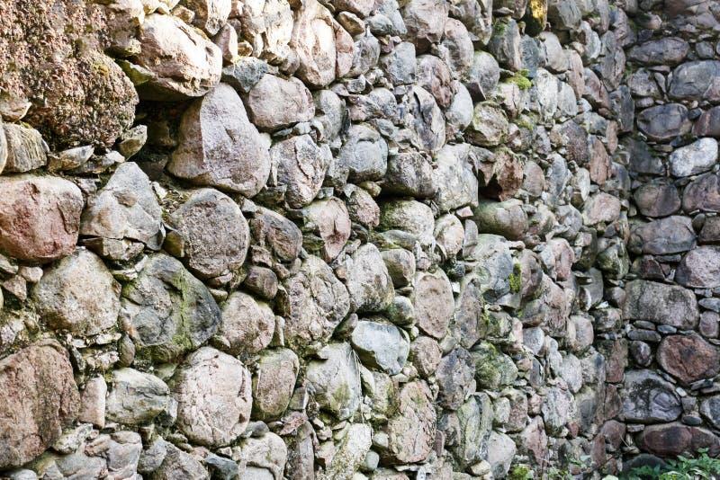 fall sent Morgon Solskenen till och med träden stenar i träsket, en vägg av stenen som ibland bygger arkivfoto