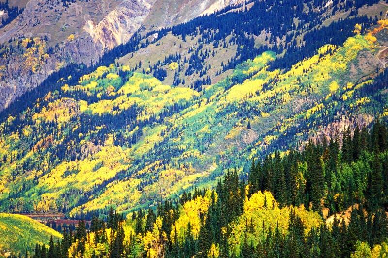 Fall at Silverton, Colorado stock photo