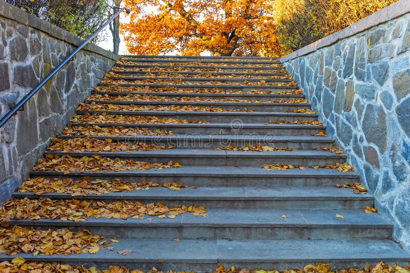 Fall Stairs royalty free stock images