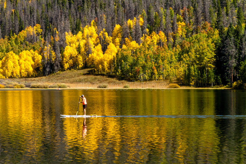 Fall in Steamboat Springs Colorado lizenzfreies stockbild