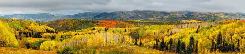 Fall in Steamboat Springs Colorado stockfotografie