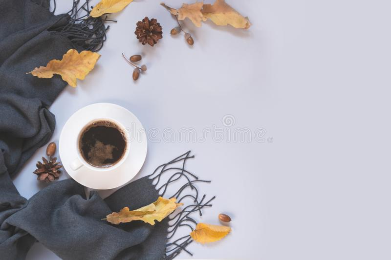 Fall still life, black coffee, gray scarf for cozy and warming. Top view and copy space. stock image