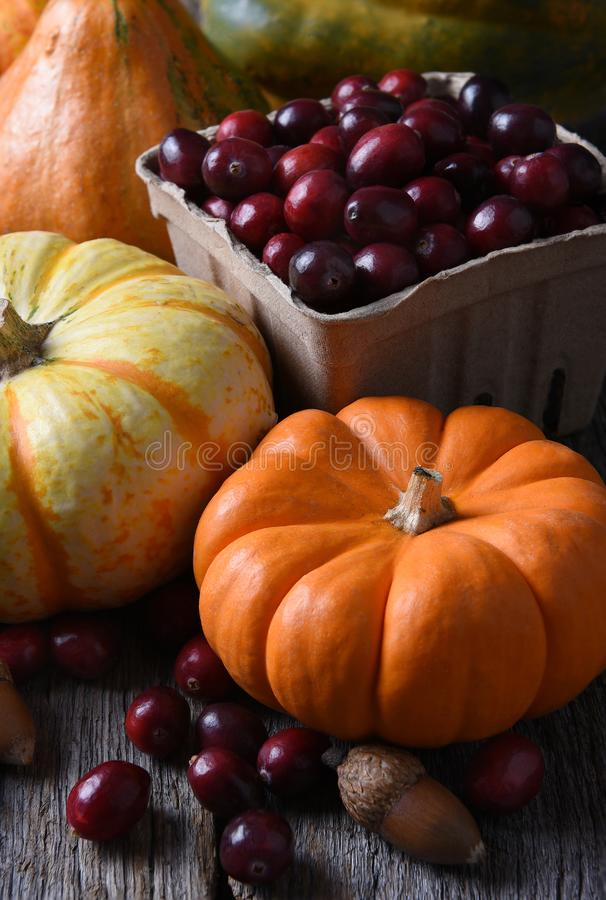 Fall Still Life with Cranberries royalty free stock images