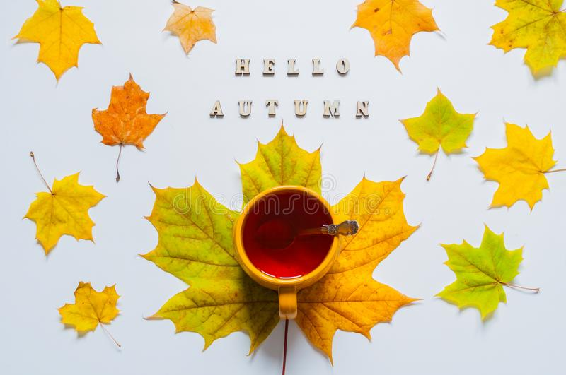 Fall still life. Cup of tea with maple fall leaves and inscription Hello autumn on the white background. Fall seasonal background vector illustration