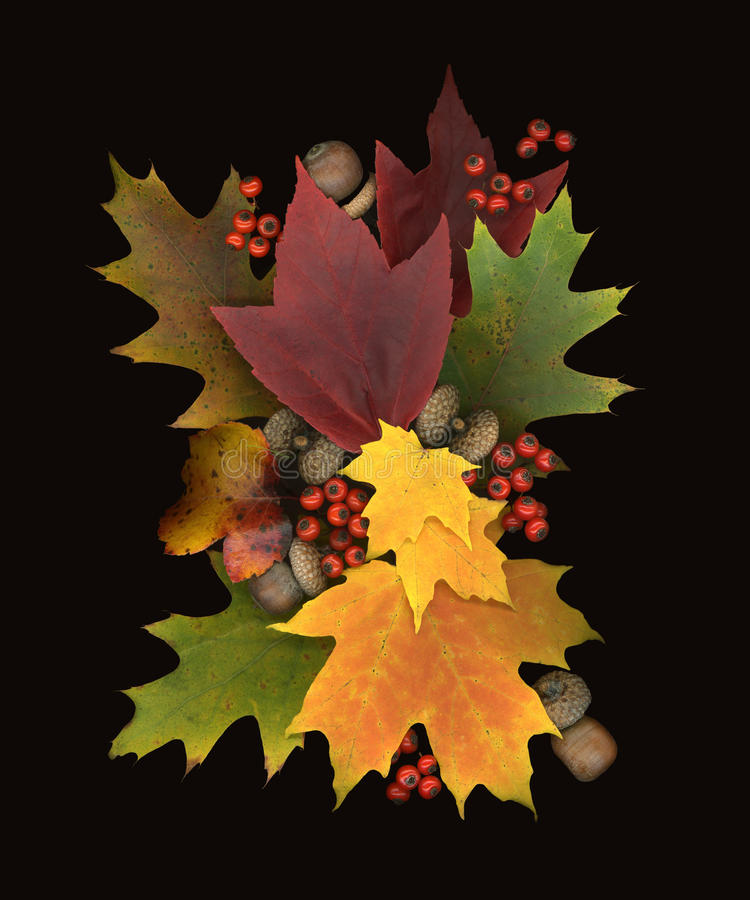 Fall on Sturthmore royalty free stock photography