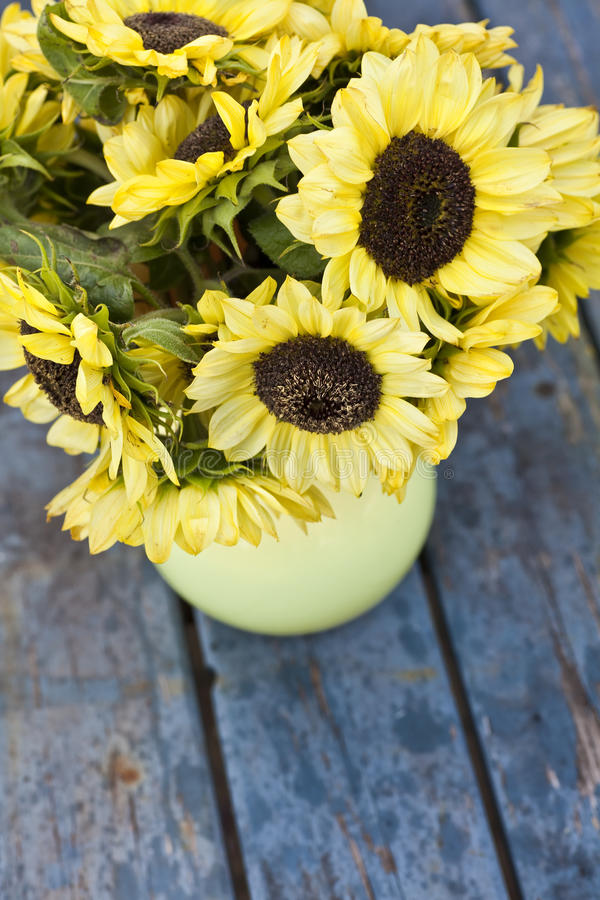 Free Fall Sunflowers And Vase Stock Image - 24612201