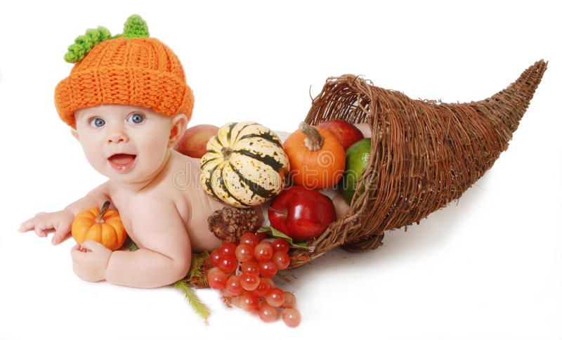 Fall Thanksgiving Baby in a Cornucopia stock photography