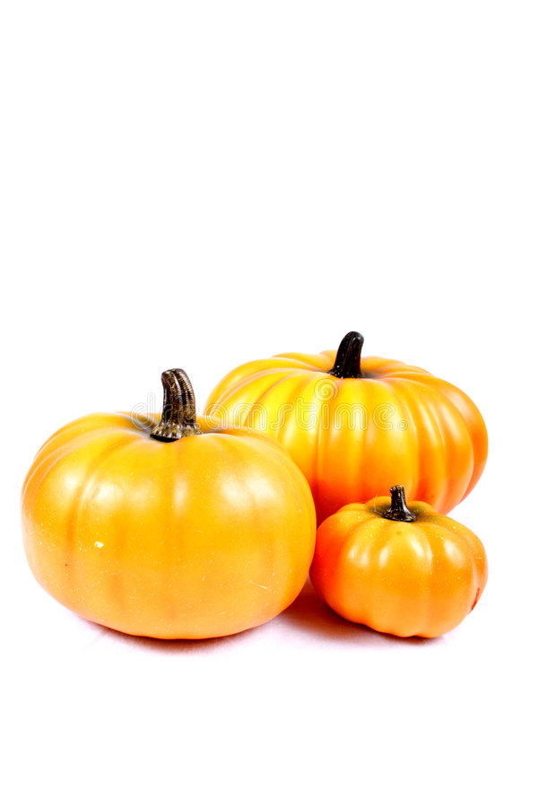 Download Fall - Thanksgiving Decorations Stock Image - Image of fall, yellows: 225409