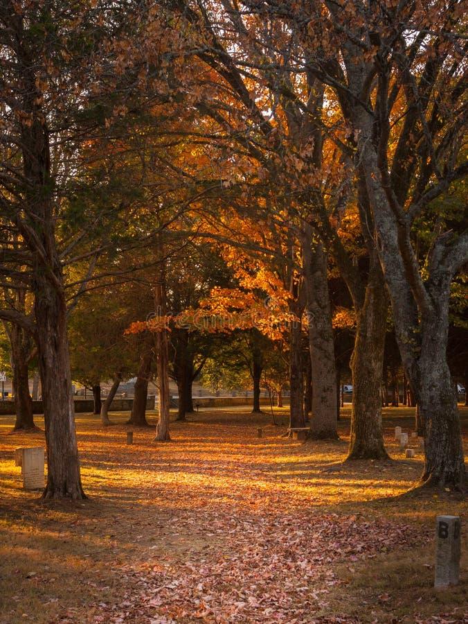 Fall Trail royalty free stock photos
