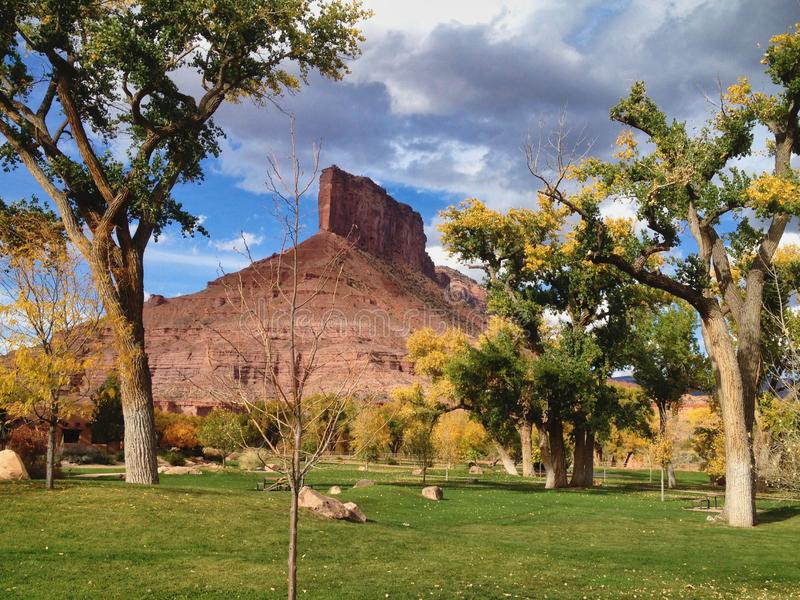 Fall Trees im Gateway Canyons Resort and Spa stockfotos