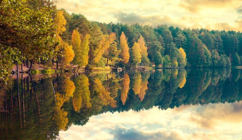 Fall trees lake royalty free stock image
