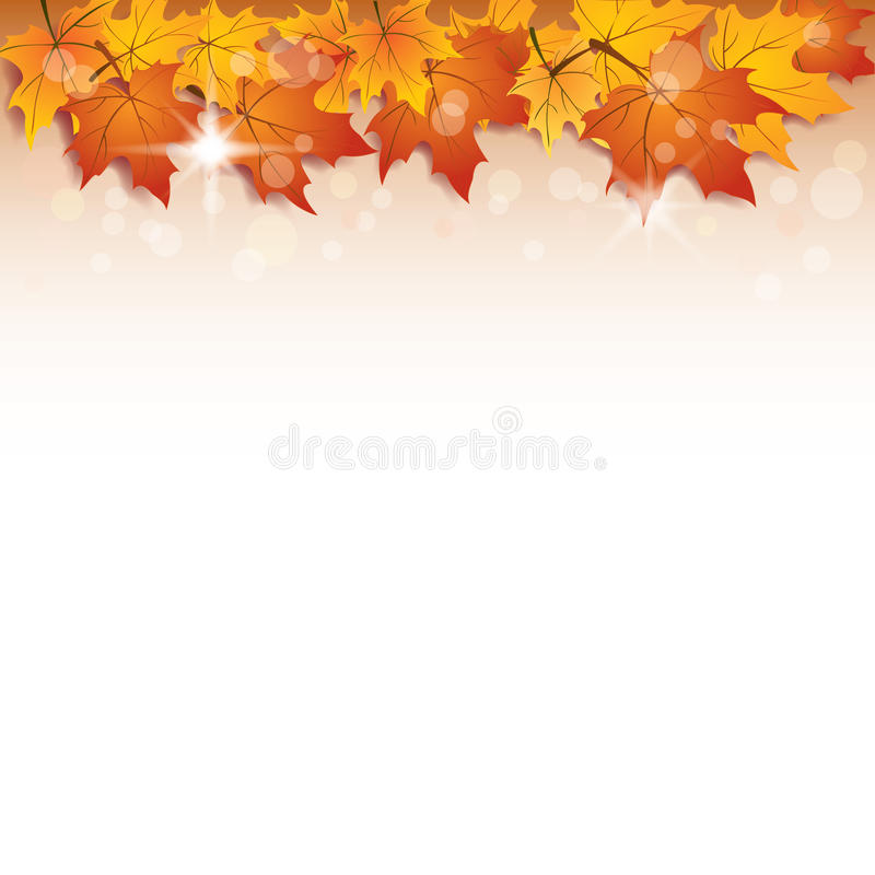 Download Fall vector background stock vector. Illustration of growth - 21967445