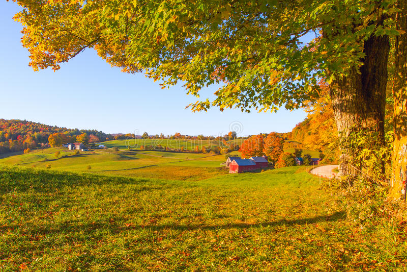 Fall in Vermont stockfotografie